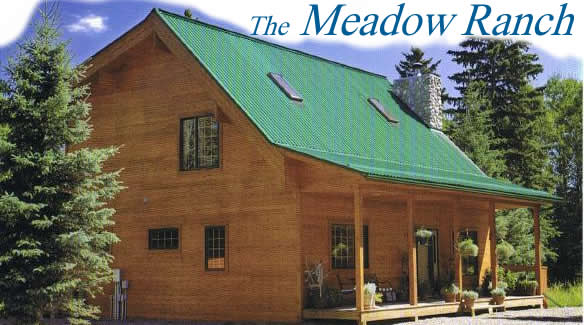 Custom homes meadow ranch cedar homes post beam homes for Ranch style timber frame homes